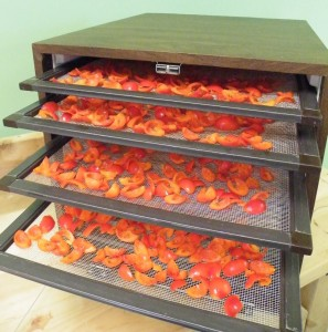 Fresh rosehips ready to go in the dehydrator